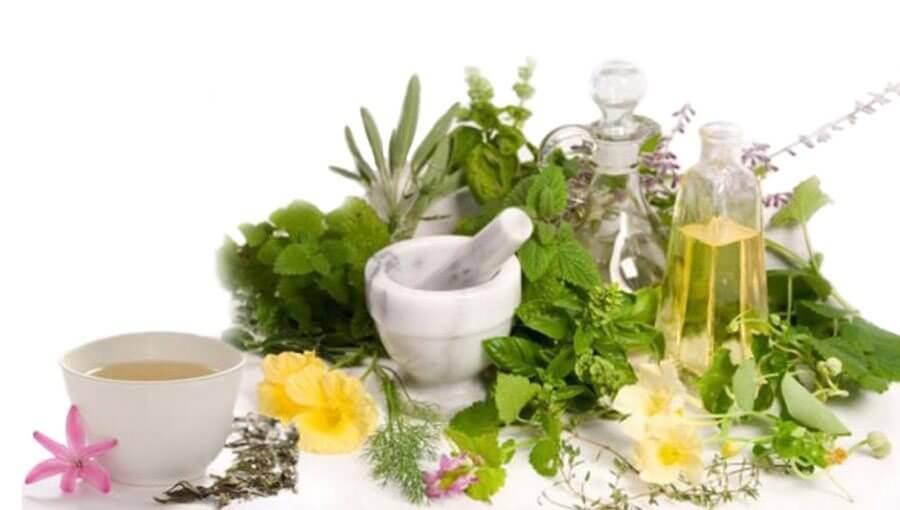 gyógynövények artrózisos ízületek kezelésére