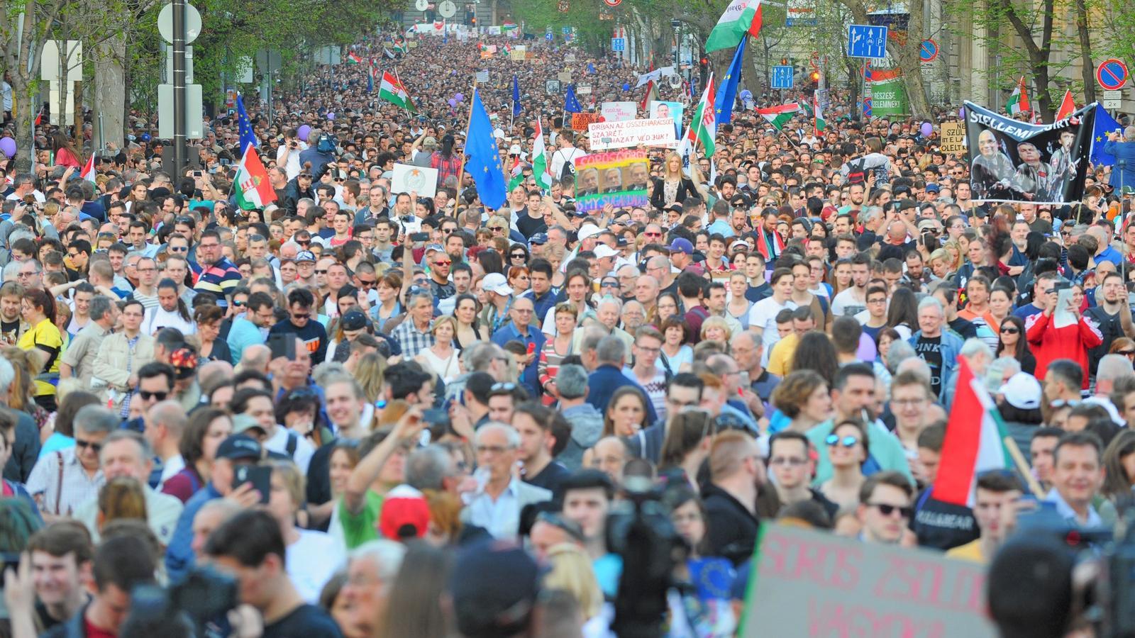 Kategória:Lengyel együttesek – Wikipédia