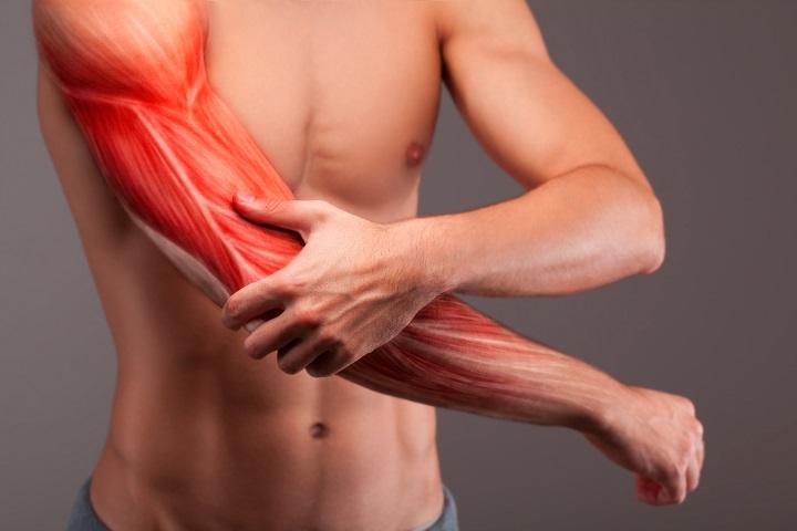 ízületi és izomfájdalmak áttekintése