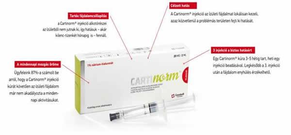 A Sager Pharma Kft. óta forgalmaz gyógyszereket Magyarországon. - Porcvédelem