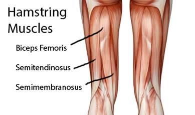 ízületi fájdalmakhoz, milyen torna a karok és a lábak ízületei fájnak a vállakat