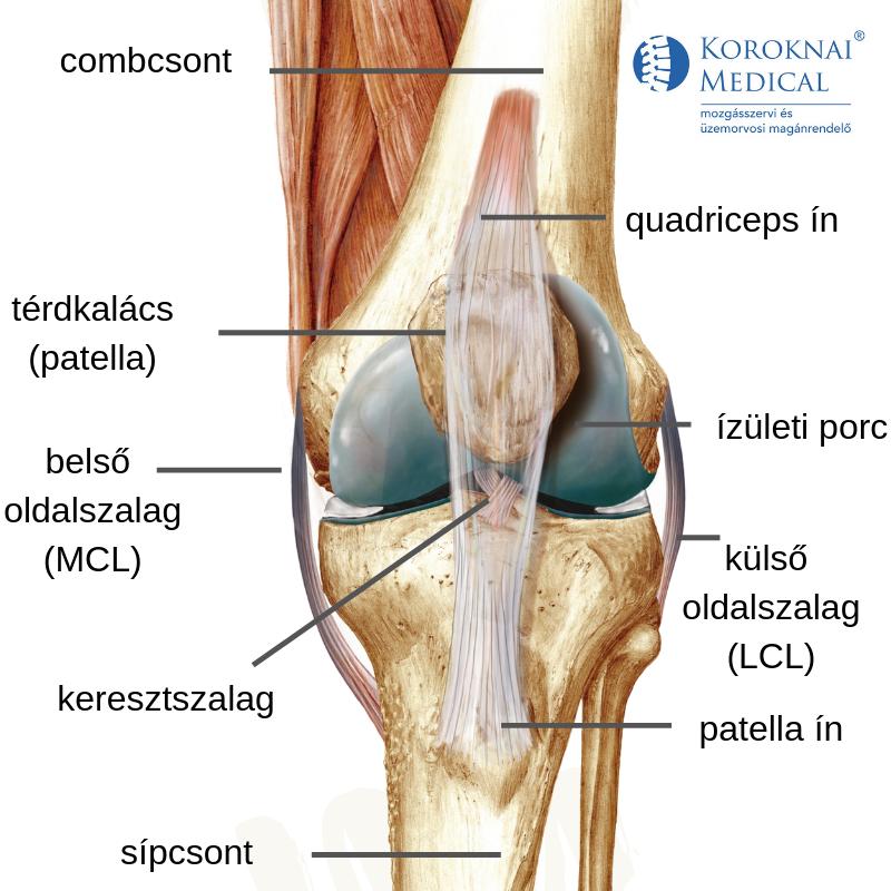 a térd gyógyult izületi gyulladása a lábak ízületei 20 év alatt