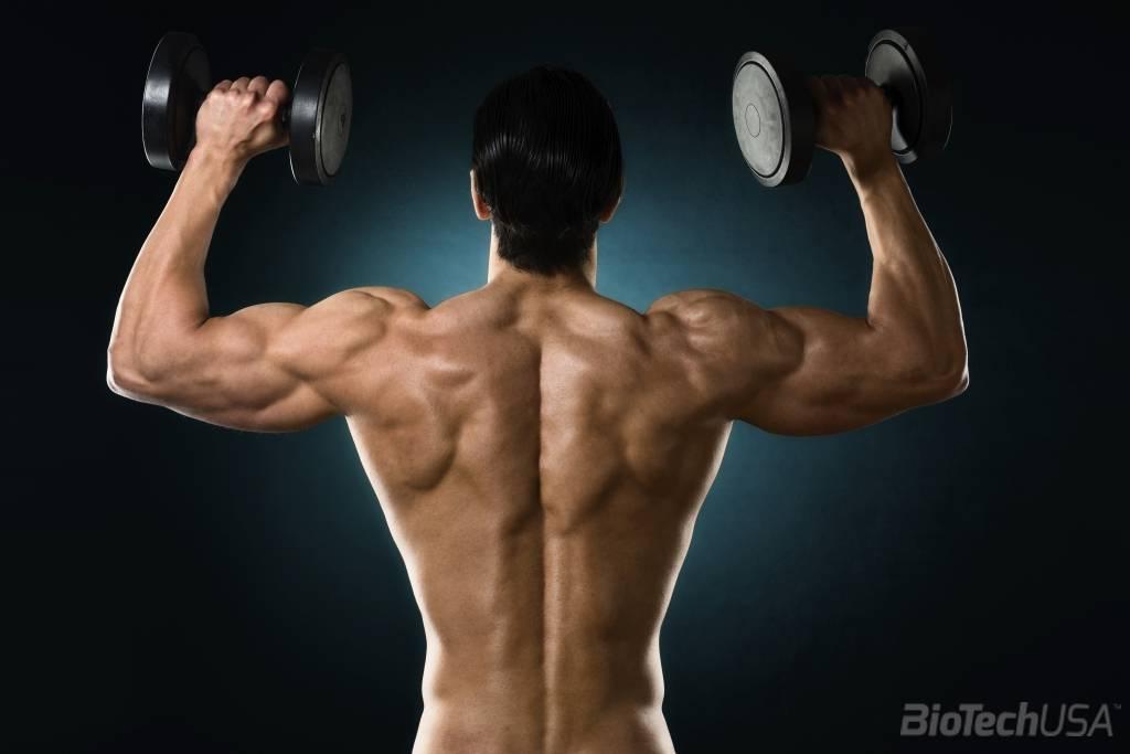 edzés után fáj a vállízületek agar ízületi kezelés