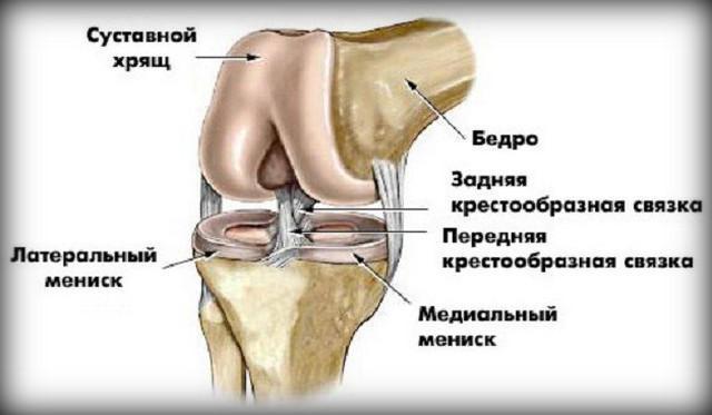 Hatékony térdmasszázs technikák az artrózishoz