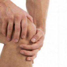 ízületi kezelés piros lóherevel fájdalom a csípőízületekben és az izmokban