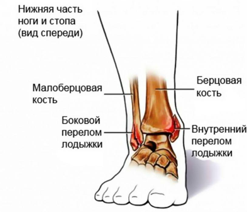 boka sérülésének jelei