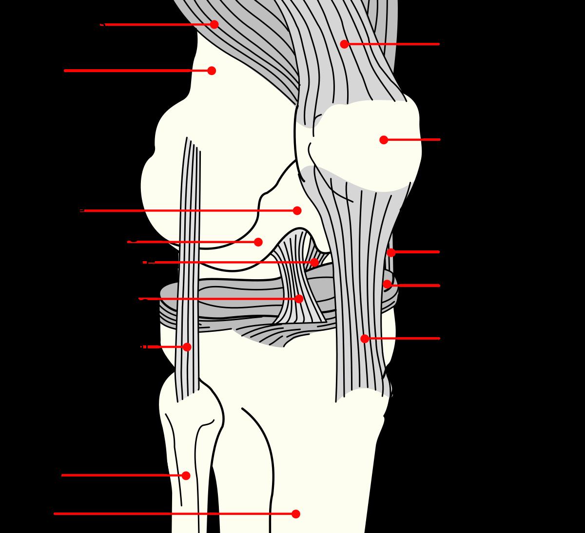 Tíz térd-sérülés és kezelés