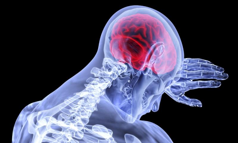 a térd artrózisának mértéke radiológiai