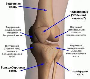 vállkárosodás következményei hogyan lehet gyógyítani a térdízület 3. fokú artrózisát