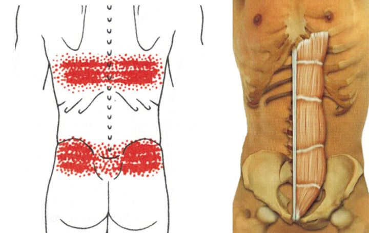 a legjobb kenőcs a nyaki osteochondrozishoz mire szolgál a glükozamin és a kondroitin