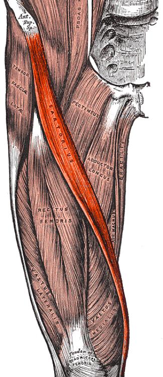 mi a fájdalom a csípőízületben mellkasi fájdalom