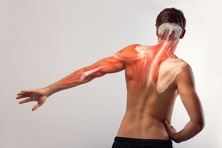 a csípőízület ii. fokú deformáló artrózisa ha a csípőízület fáj, mit kell tenni