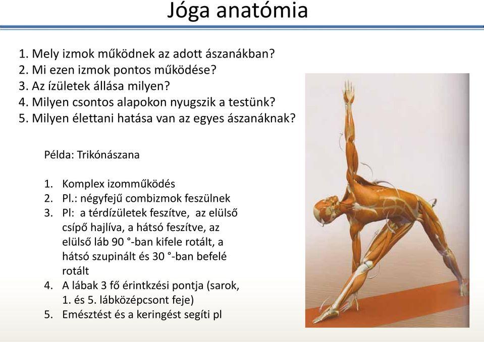 a karok és a lábak ízületei artrózisa gyógyszer az ujjak artrózisának kezelésére